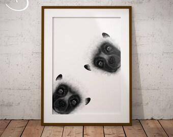 CUTE CURIOUS LEMUR Drawing download, Lemur Wall decor, Curious Lemurs Print, Printable Lemur Poster, Lemur Decor, Curious Animals, Lemur Art
