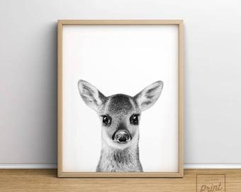 Deer print, Printable Art, Baby deer, Baby animal prints, Nursery wall art, Nursery decor, Woodland nursery, Animal Print, Fawn print