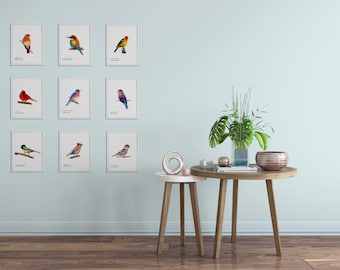 Bird Art Prints- Colorful - Art Prints - Choose Nine