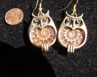 Brass Ammonite Owl Earrings are Back  Harry Potter, Winnie the Pooh, Pogo  SRAJD, WWWG, paganteam, OlympiaEtsy, FunkyAlternativeJewelry