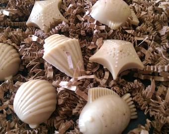 Sand Toys Soap, Organic Glycerin base, 7 Soaps, Shells, Fish, Starfish, 2.9 oz total w/ gift bag.