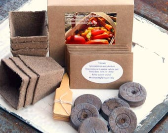 Vegetable Garden Seed Kit, Heirloom Vegetables and Seed Starting Supplies in Gift Box, Gardening Gift Set, Container Garden Kit