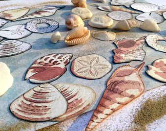 DIY printable collage sheet, artistic neutral sea shells, scrapbooking embellishments for nautical vacation beach summer crafts, jpg pdf