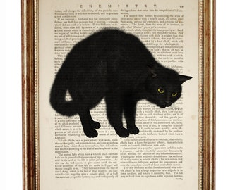 Black Cat Art, Black Cat Print, Black Cat Decor, Black Cat Print, Black Cat Art Print, Dictionary Art Print, Cat Lover Gift, illustration