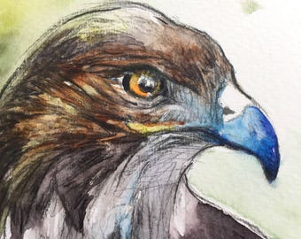 Hawk on Alert - Original Watercolor