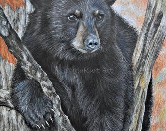 Bear art BACKYARD VISITOR by Carla Kurt signed Print 11 x 14