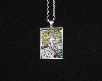 Silver Birch Tree Nature Photo Silver Pendant Necklace