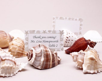 10 pcs Seashell Place Card Holder with Blank Place Cards