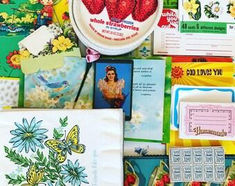 Birdie Bag Ephemera Pack Strawberry Fields Forever Citrus Junk Journal Scrapbook