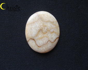 White Natural Sponge Coral Oval Cabochon 24x30x2mm