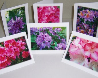 Note Cards, Photo Notecards, Rhododendron Cards, Floral Notecards, 6 Pack Notecard Set