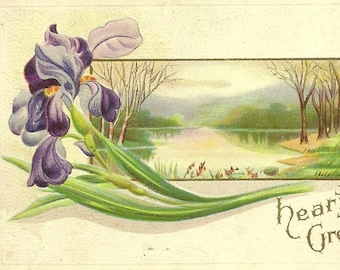 RESERVED LISTING (MRS) Purple Iris and Country Lakeside Scene Unused Embossed Vintage Postcard from Stecher Litho  – Hearty Greetings