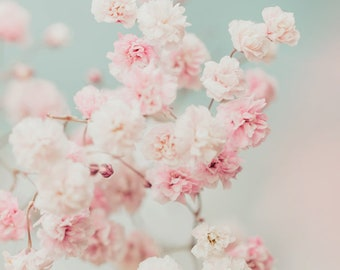 Baby's breath photography, Gypsophila print, flower print, floral photo, dreamy pastel pink flowers, white flowers, home decor, wall art