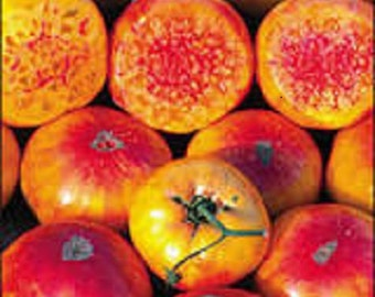 Non-Gmo Organic Heirloom Hillbilly Tomato Seeds  beefsteak type tomato is a favorite for slicing and fresh eating.