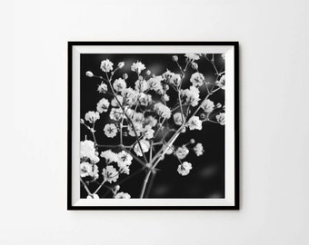 Flower Photography, Floral Print, Printable Photography, 8 x 8 in, 10 x 10 in, 12 x 12 in, Digital download, Instant Download