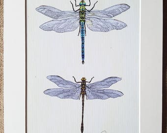 Dragonfly Wall Art Dragonfly Painting Dragonfly Artwork Dragonfly Print  Dragonfly Original Art - Emperor & Golden Ringed Dragonflies