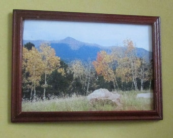 doll house miniature framed photo mountain and trees