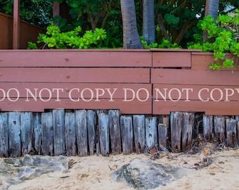 Digital Backdrop Background Beach Hawaii