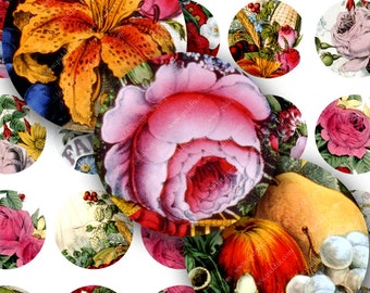 Flowers and Fruits from Vintage Hand-Colored Lithographs in 1.25-inch Circles -- piddix digital collage sheet  no. 54