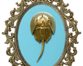 Gold Horseshoe Crab - Victorian Framed Object - Wall Art Decor 10x13in