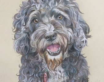 Bespoke coloured pencil pet portrait.
