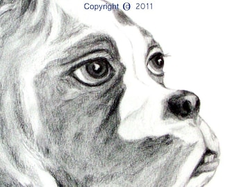 "SAMPLE of Fine Art, Pencil Drawing ""THINKER"" 14 X18 Commission your Pet Portrait today"