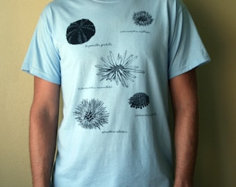 sea urchin t-shirt - natural history illustration