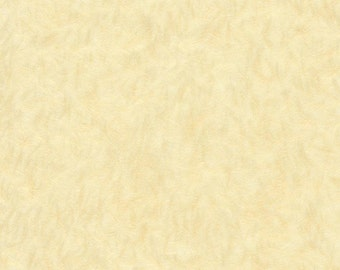 Japanese Obonai feather - parchment,  5 letter-sized sheets