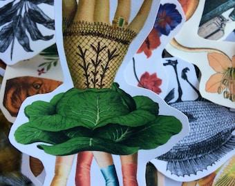Hands #6 surreal collage art handmade paper sticker japan
