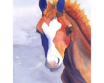 Horse Portrait 8x10 archival fine art print