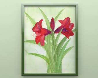 Amaryllis Print from Original Watercolor