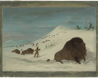 George Catlin : Buffalo Lancing in the Snow Drifts (1861-69) Canvas Gallery Wrapped Giclee Wall Art Print (D45)