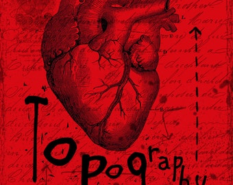 Topography of the heart