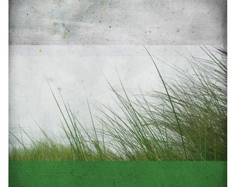 Ben Prairie (Nature Photography - Fine Art Print -  botanical - Grass - Wind - Country - Monochromatic - Wall Art  - Spring - Green)