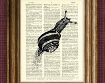 Cool SNAIL beautifully upcycled vintage dictionary page book art print 8.5 x 11