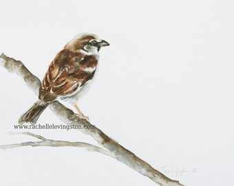 modern minimalist art minimalist painting for her watercolor painting of Sparrow painting bird PRINT bird Painting bird wall art