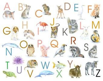 Animal Alphabet Poster - Watercolor Animals 14 x 11 wall art - nursery art – ABC nursery art