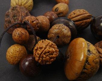 Natural bead strand, seed pod nut earthy earthtones