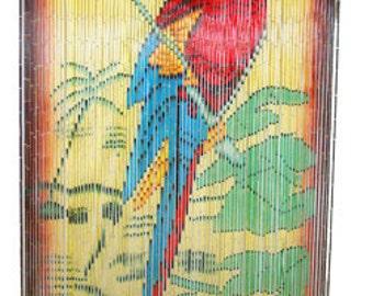 Tropical Colorful Parrot