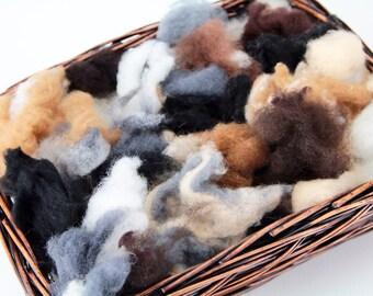 Grab Bag of Premium Felting Wool