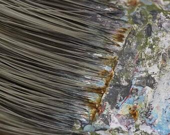 "Studio Decor, Artist Gift, Digital Download, Macro Photography, Paintbrush, Wabi-Sabi, Tarnished, Rustic Decor, Found Art, Paint, ""Painted"""