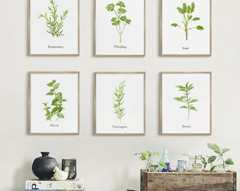 Herb Prints, Kitchen Art, Botanical Print, Set of 6 print, Kitchen Wall Decor, Watercolor Painting Print