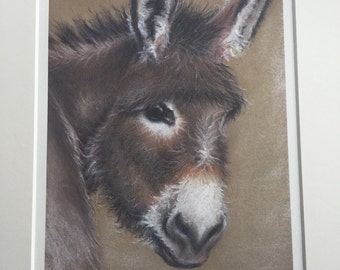 Donkey, Pastel drawing, limited edition print, gift for him, gift for her, gift for Mum, Mothers Day