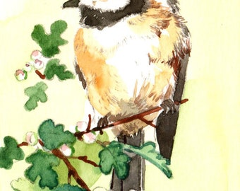 ACEO Limited Edition 1/25- Spring chickadee, Bird print of watercolor ACEO, Miniature painting
