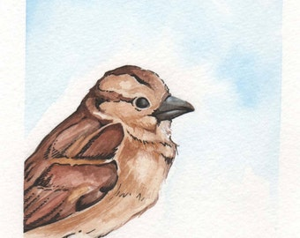Brown Bird | 4x6 Original Watercolor