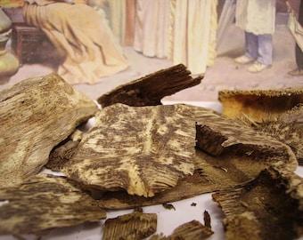 Malaysian agarwood