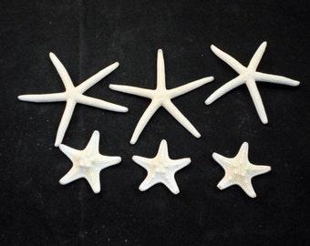 """Set of 3 White Finger Starfish (2-3"""") and 3 White Knobby Starfish (1-2"""") Beach Wedding Nautical Coastal Ocean"""