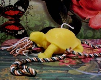 2 Beeswax Turtle Candles