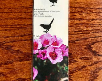 Bulldog and Birds Bookmark- Tiny Collage #1