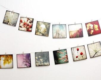 Set of twelve cards postcards art 14 x 14 - set Nature 02
